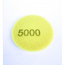 EVOXA krążek papier ścierny na gąbce 75mm P5000 5 sztuk/opakowanie